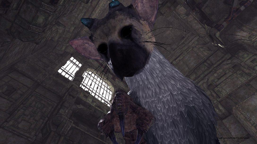 Experimente o Demo de The Last Guardian no PlayStation VR