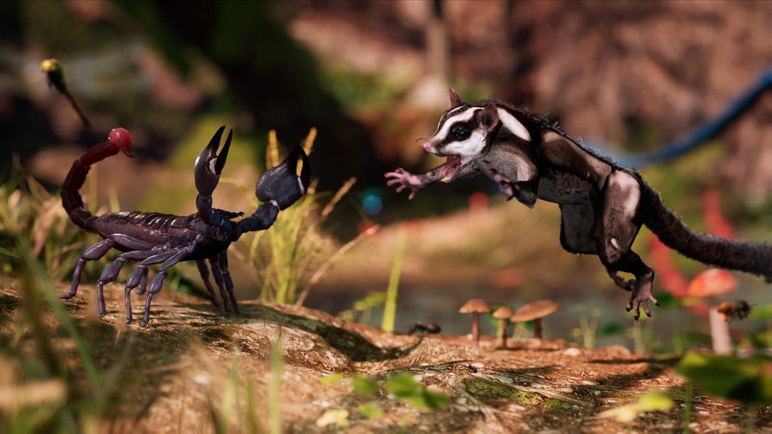 Viva seu próprio documentário de natureza em Away: The Survival Series, disponível em 2021